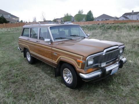 1985 AMC Jeep Grand Wagoneer for sale