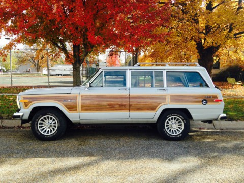 1989 Jeep Wagoneer Sport Utility 4-Door 5.9L for sale