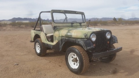 1966 Jeep CJ5, 50 years! for sale