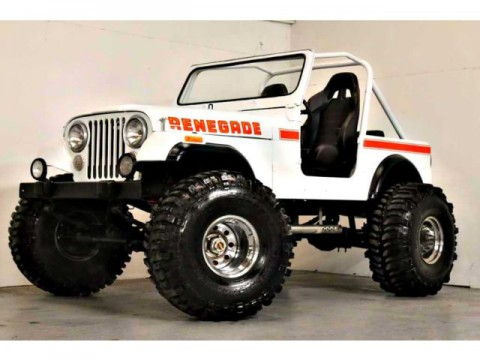 1980 Jeep CJ for sale