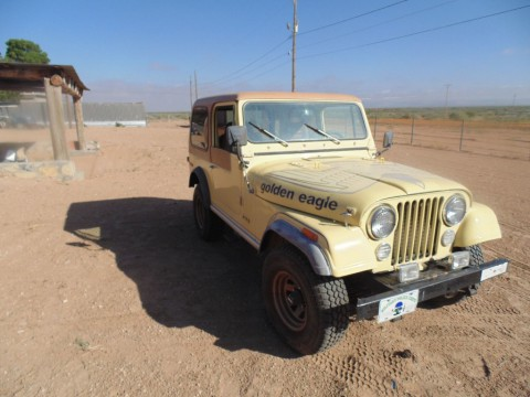 1980 Jeep CJ Golden Eagle-CJ7 for sale