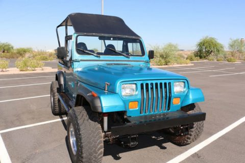1993 Jeep Wrangler YJ,Custom 8 Passenger,4.0 Liter for sale