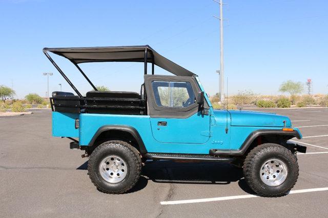 1993 Jeep Wrangler YJ,Custom 8 Passenger,4.0 Liter