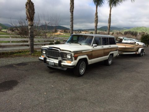1983 Jeep Wagoneer Brown wood look for sale