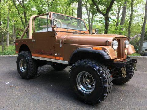 1979 Jeep CJ for sale