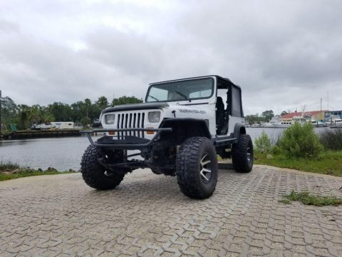 1993 Jeep Wrangler Sport for sale