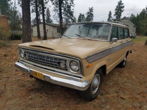 1976 Jeep Wagoneer for sale