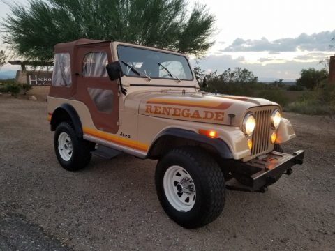 1981 Jeep CJ5 Renegade for sale