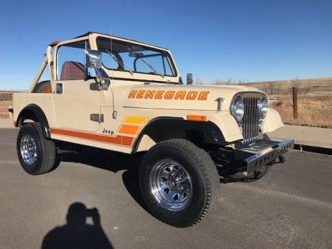 1984 Jeep CJ renegade for sale