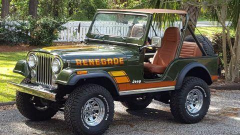 1983 Jeep CJ Renegade for sale