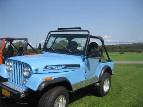 1979 Jeep CJ for sale