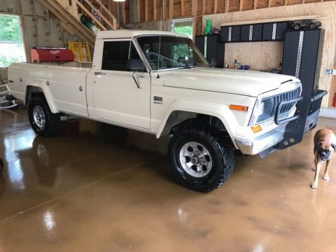 1984 Jeep J10 for sale