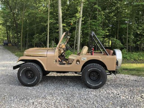 1966 Jeep CJ 5 Basic for sale