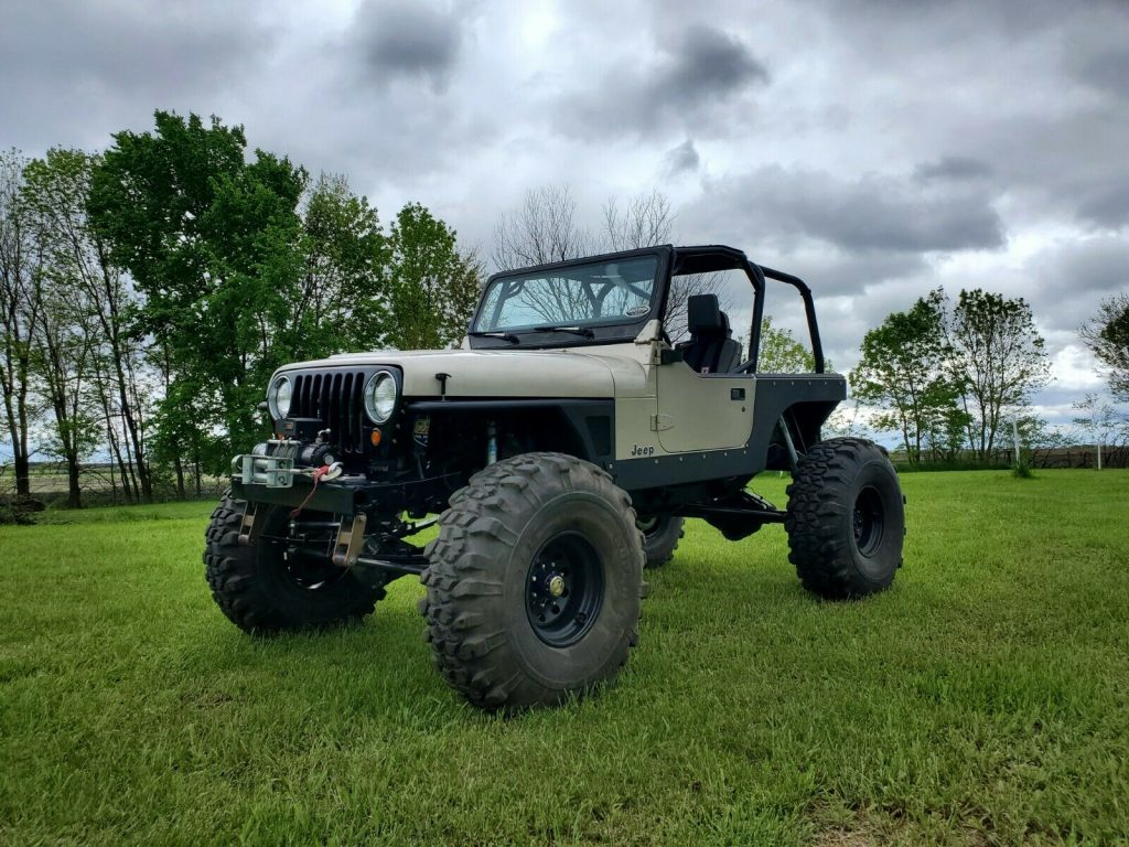 1995 Jeep Wrangler Rock for sale