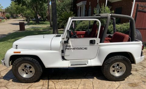1992 Jeep Wrangler RENEGADE for sale