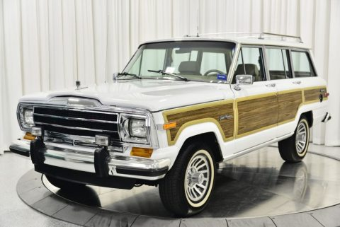 1991 Jeep Wagoneer for sale