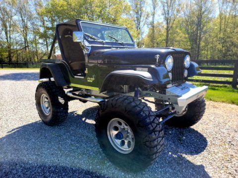 1980 Jeep CJ Limited for sale